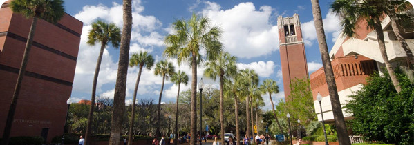 University-of-Florida-Merit